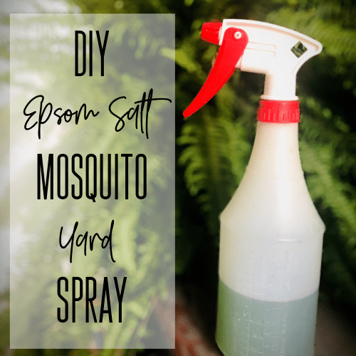 #1 Epsom Salt DIY Mosquito Yard Spray